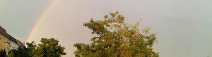 Headerbild Regenbogen 1100x300px